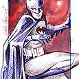 Batman amherst